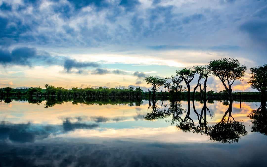 NOTRE ENGAGEMENT AUPRÈS DE SOS AMAZÔNIA