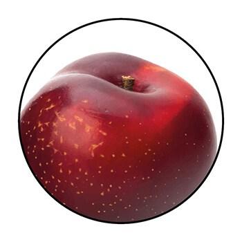 Une prune, ingrédient de l'oléagine Yemanja, dans un cercle sur fond blanc.