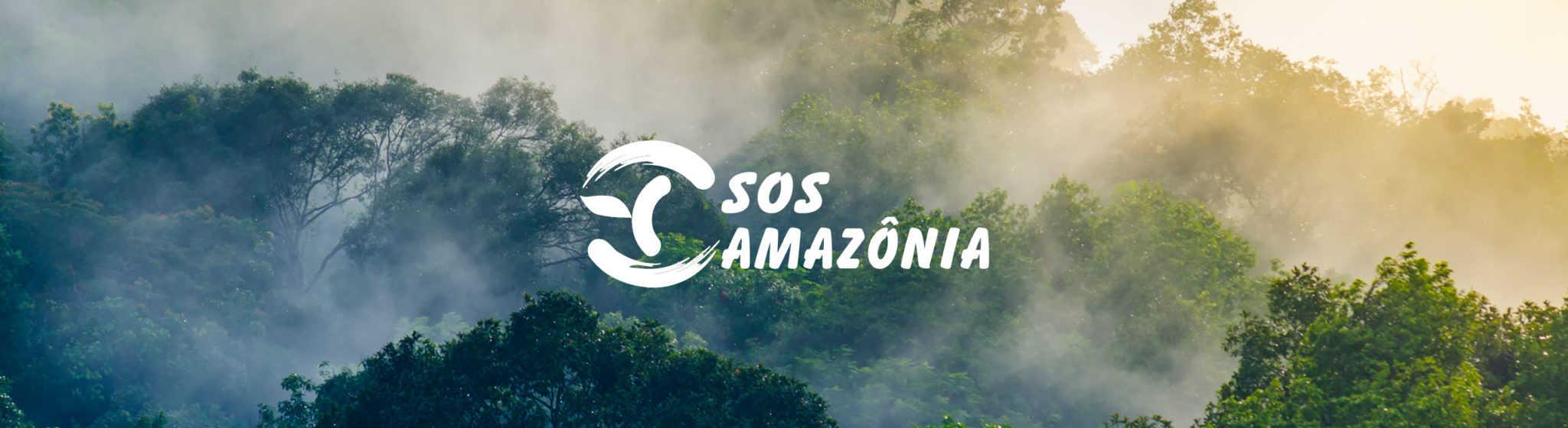 Brume au-dessus de la jungle le matin, avec le logo de SOS Amazônia dessus.