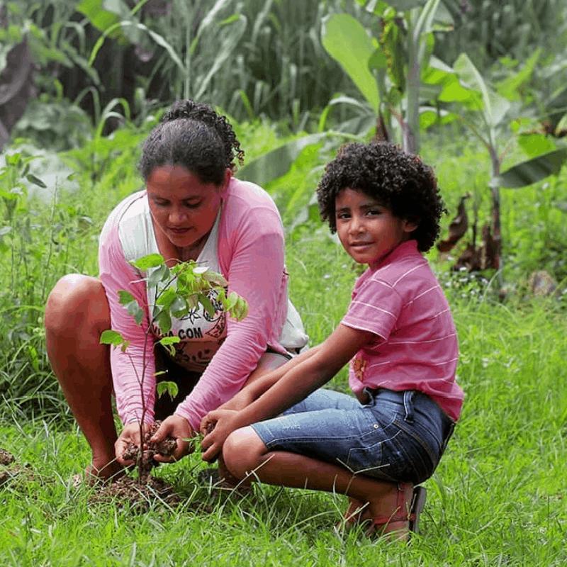 Une bénévole de l'ONG SOS Amazônia plantant un arbre accompagnée d'un enfant.